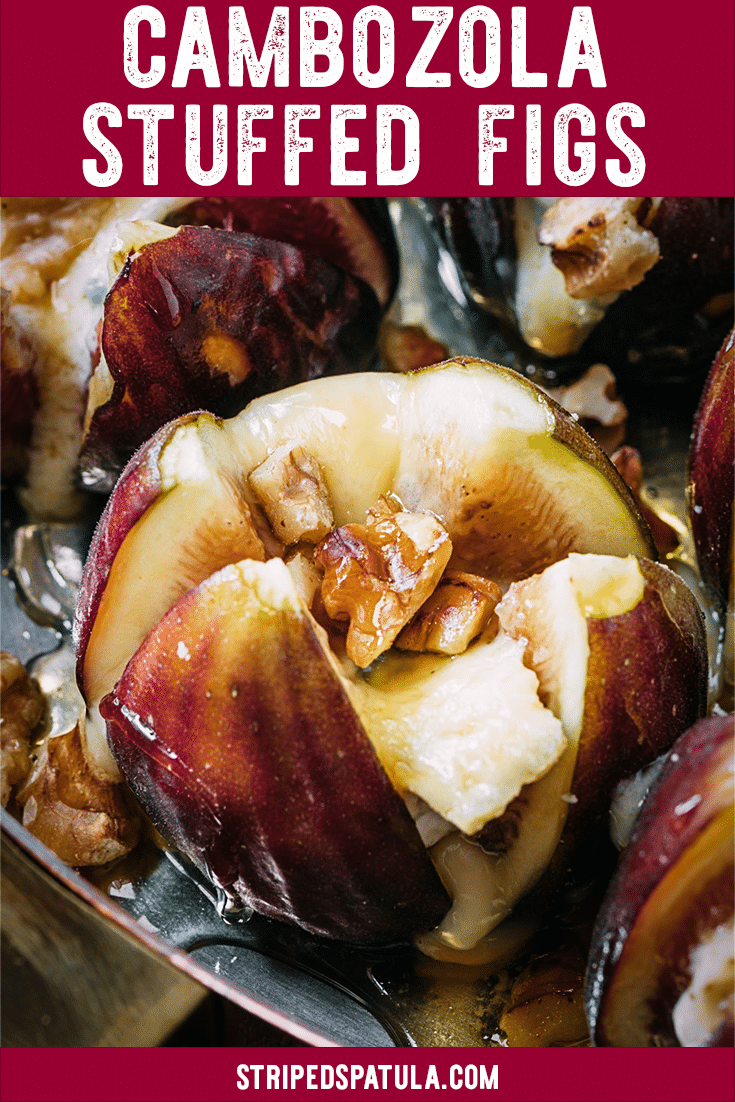 This recipe for Stuffed Figs with creamy Cambozola cheese (triple creme blue cheese), toasted walnuts, and honey is the perfect early-fall appetizer. They only take a few minutes to make and are impressive for entertaining! #cheese #figs #appetizers #fallrecipes #cheeserecipes