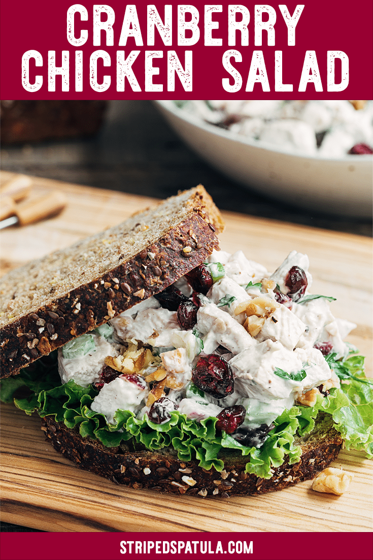 Cranberry Chicken Salad With Walnuts Striped Spatula