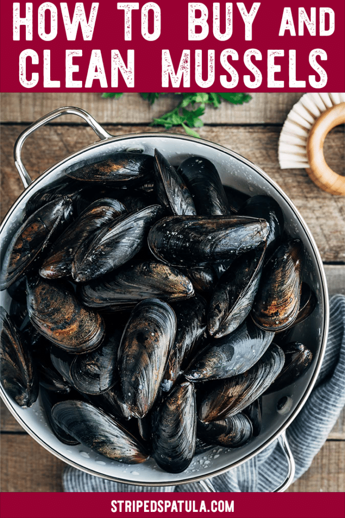 fresh mussels guide: how to buy and clean mussels