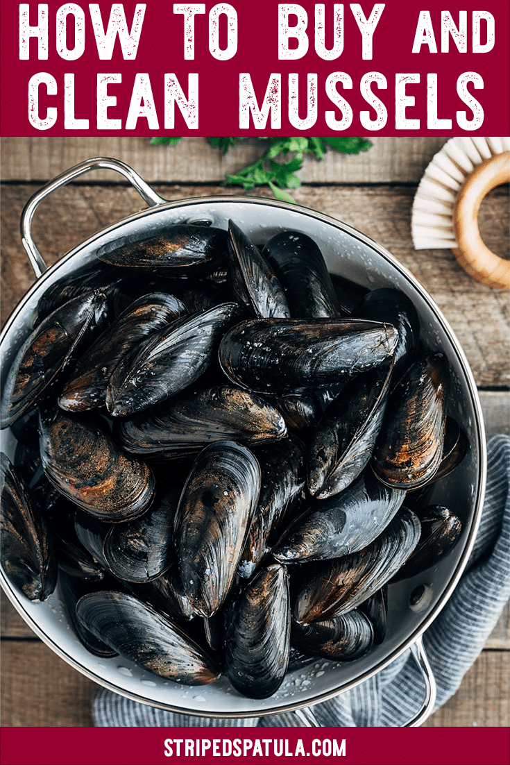 Love fresh mussels but aren't sure how to prep them at home? Find out everything you need to know about how to buy, clean, and cook mussels, plus recipe ideas for inspiration! #mussels #seafood #howto