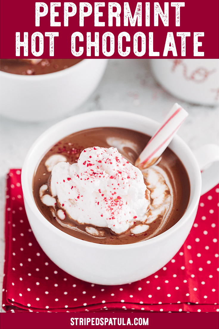 See how easy it is to make homemade Peppermint Hot Chocolate! This recipe is great for parties and you can spike it with alcohol (peppermint schnapps) for the adults. It's the ultimate cold weather treat! #hotchocolate #hotchocolaterecipes #peppermint #peppermintrecipes #winterrecipes