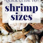 quick guide to shrimp sizes