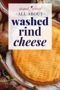 washed rind stinky cheese reference guide