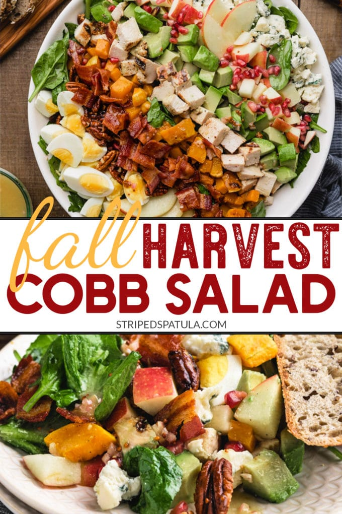 how to make a harvest cobb salad for fall lunches