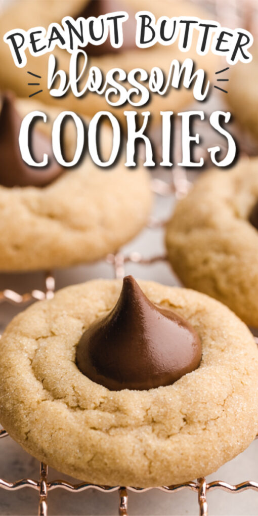 peanut butter blossoms pin 2